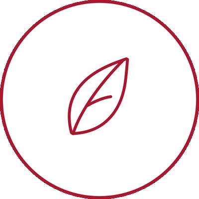 area-bio-hover